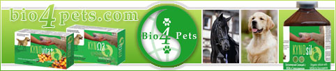 Kynosil Kyno3 & Kynovita+ supplements for mobility, beautiful coat & vitality of your pet.